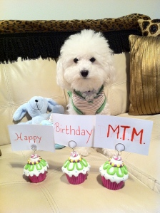 Happy Birthday MTM