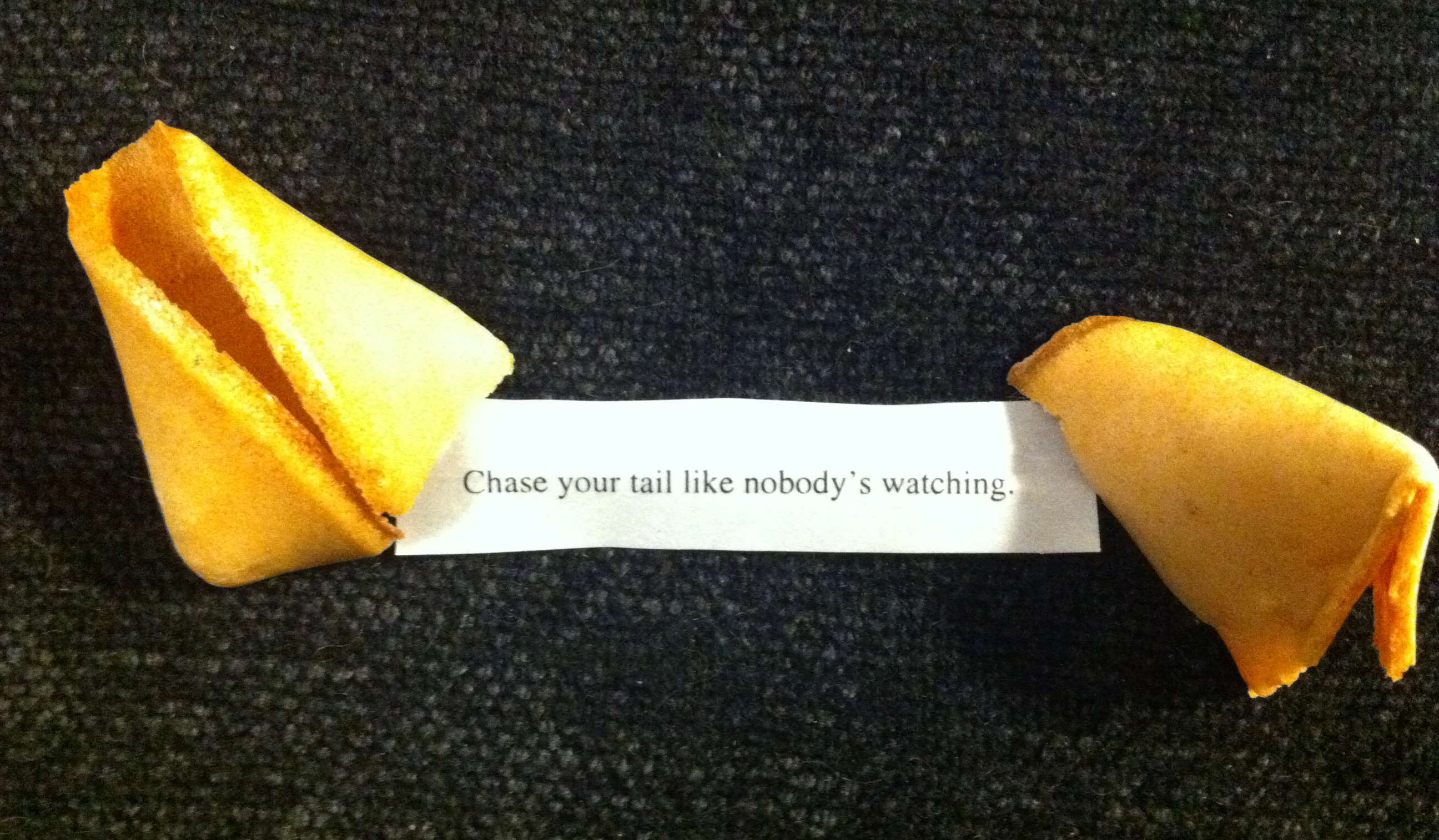 Fortune Cookies Good For Dogs