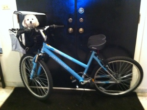 Bike Rider@TheDanteDiaries