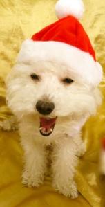 I'm Santa
