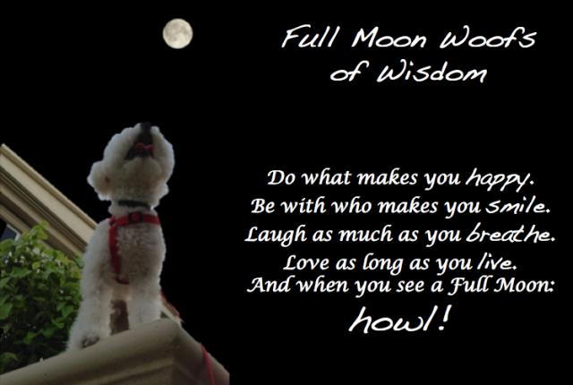 Full Moon Wisdom