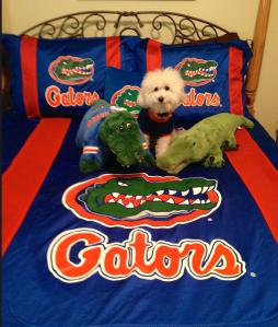 Gator Bed
