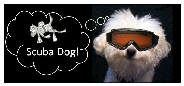 scuba-dog