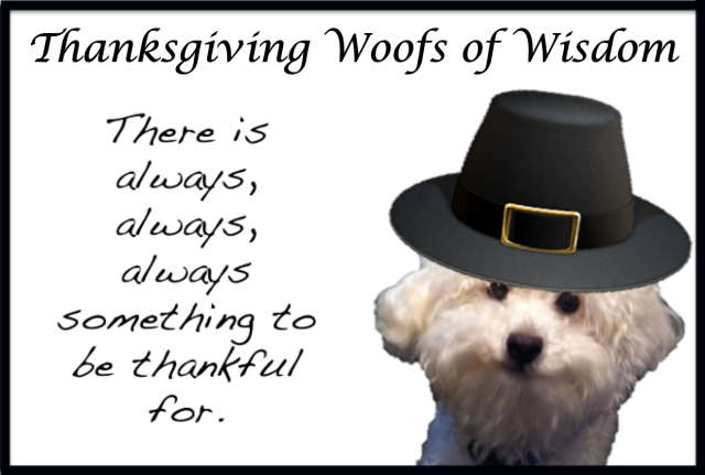 Thanksgiving Woofs of Wisdom