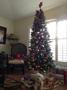 My Orlando tree