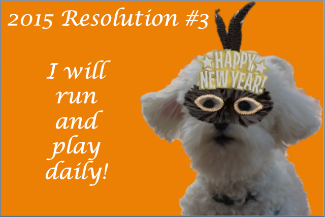 New Year's Resolution #3