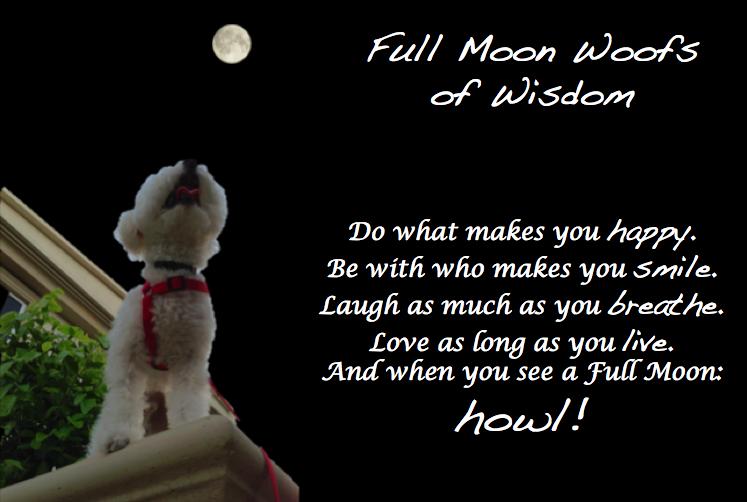 full-moon-wisdom