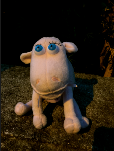 Sheila the Sheep