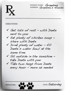 Dante Grandma Prescription