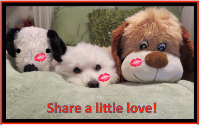 Share a little love!