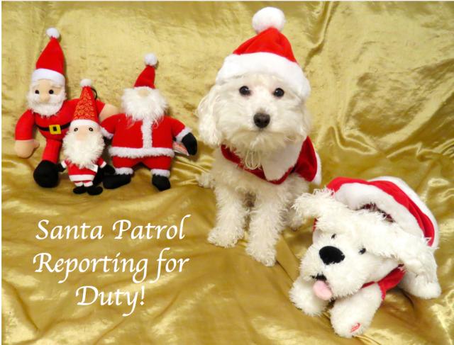 Santa Patrol
